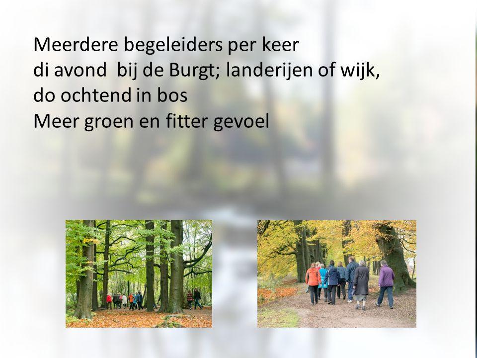 Meerdere begeleiders per keer di avond bij de Burgt; landerijen of wijk, do ochtend in bos Meer groen en fitter gevoel