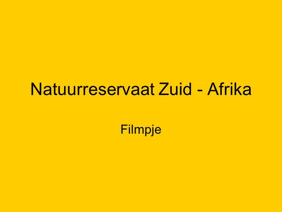 Natuurreservaat Zuid - Afrika Filmpje