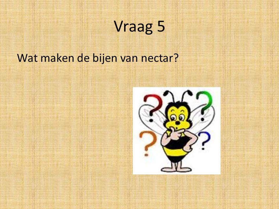 Vraag 5 Wat maken de bijen van nectar?