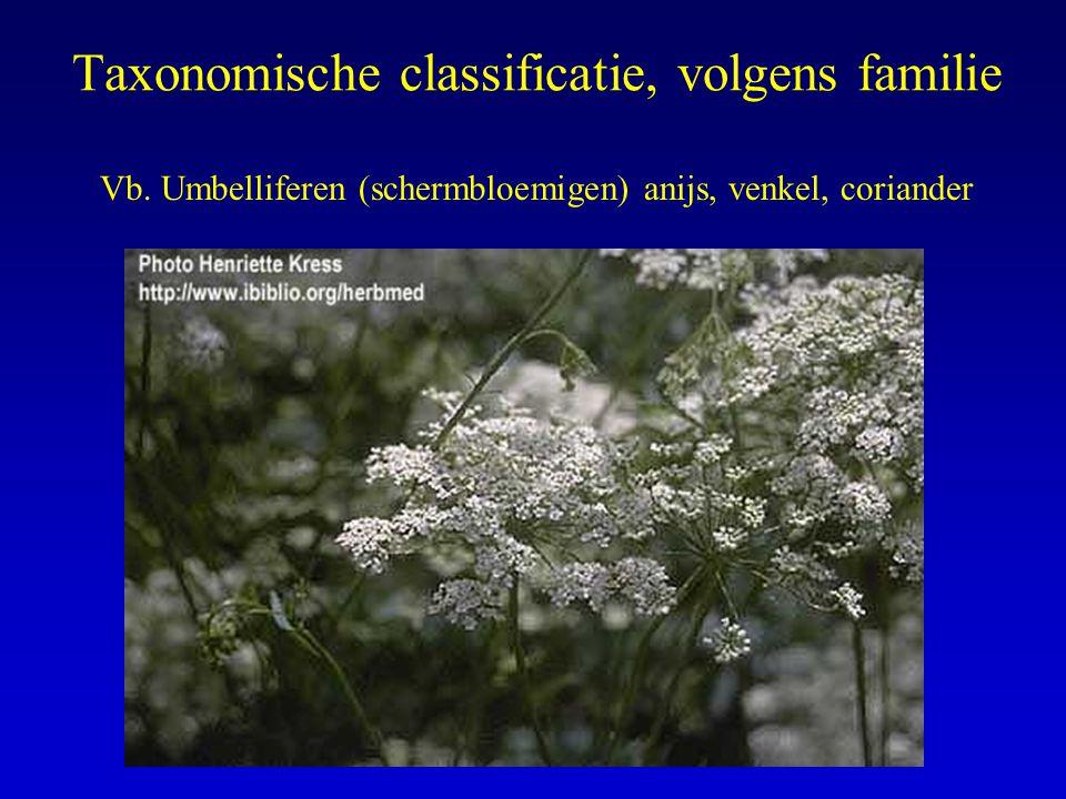 Taxonomische classificatie, volgens familie Vb. Umbelliferen (schermbloemigen) anijs, venkel, coriander