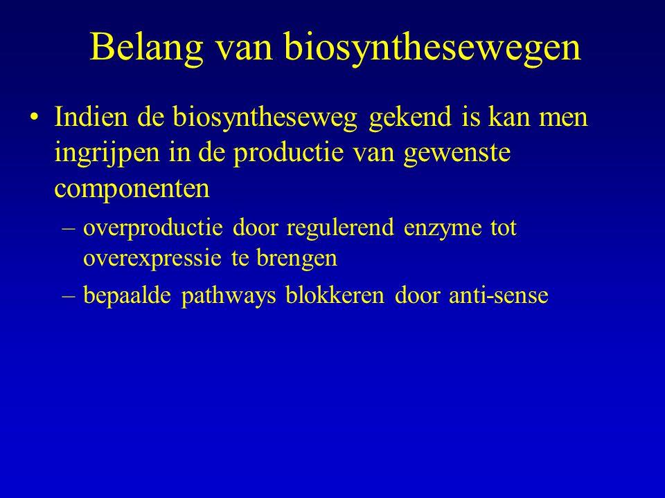 Belang van biosynthesewegen Indien de biosyntheseweg gekend is kan men ingrijpen in de productie van gewenste componenten –overproductie door regulere