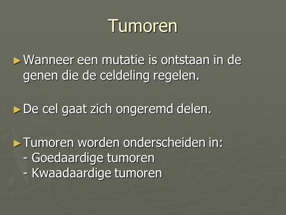 Tumoren ► Wanneer een mutatie is ontstaan in de genen die de celdeling regelen. ► De cel gaat zich ongeremd delen. ► Tumoren worden onderscheiden in: