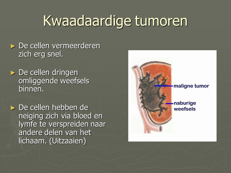 Kwaadaardige tumoren ► De cellen vermeerderen zich erg snel. ► De cellen dringen omliggende weefsels binnen. ► De cellen hebben de neiging zich via bl
