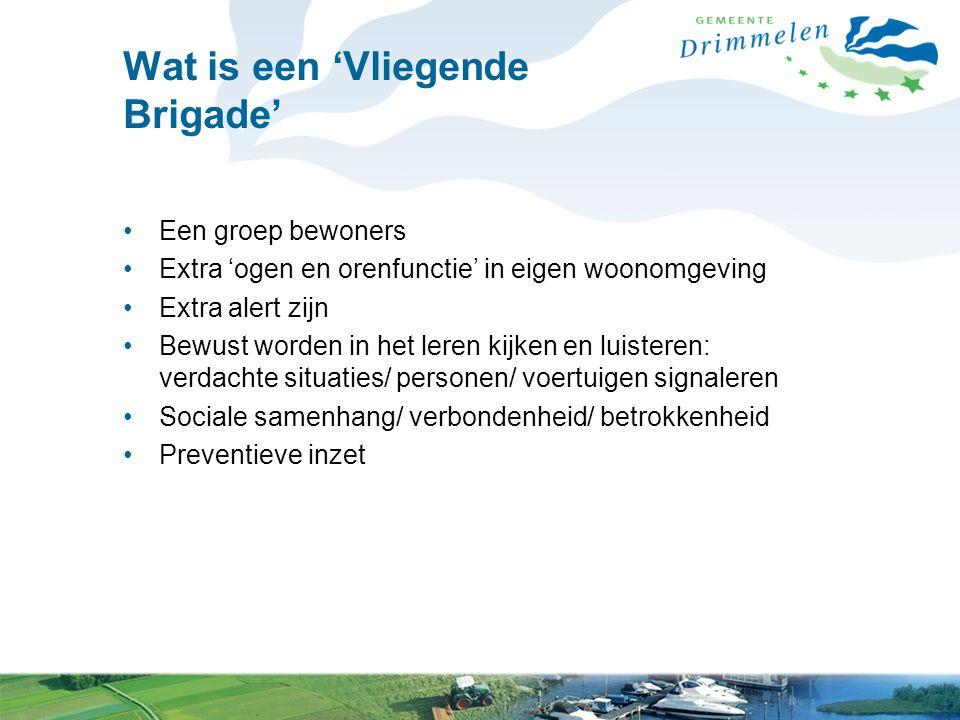 Waarom een 'Vliegende Brigade'.