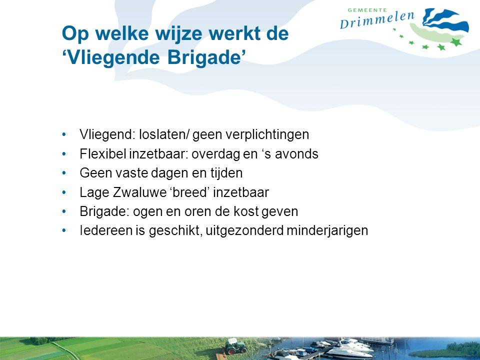Hoe werkt de 'Vliegende Brigade' in praktijk Meldingen vanuit politie naar gemeente/ Lilian Gemeente/ Lilian mailt meldingen naar leden 'Vliegende Brigade' Leden weten waar ze op moeten letten en waar ze naar moeten kijken.