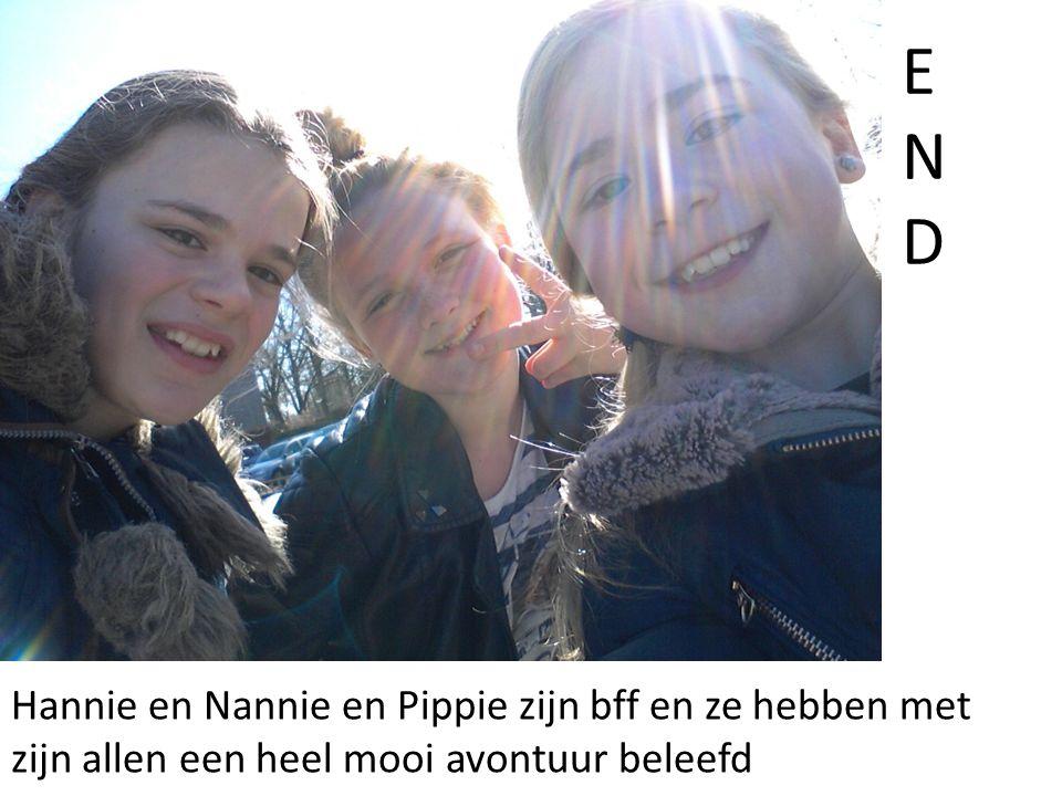 Hannie en Nannie en Pippie zijn bff en ze hebben met zijn allen een heel mooi avontuur beleefd ENDEND