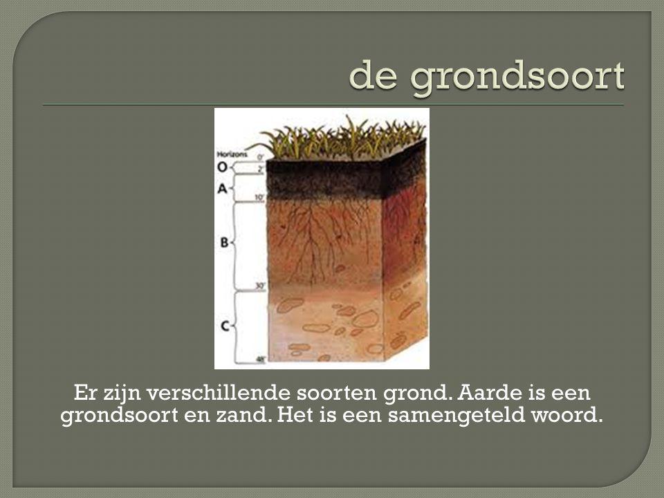 Er zijn verschillende soorten grond. Aarde is een grondsoort en zand. Het is een samengeteld woord.