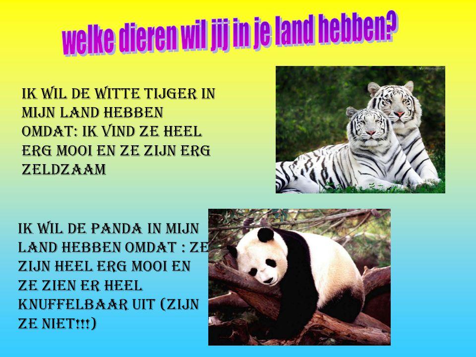 Ik wil De witte tijger in mijn land hebben omdat: ik vind ze heel erg mooi en ze zijn erg zeldzaam Ik wil de panda in mijn land hebben omdat : ze zijn heel erg mooi en ze zien er heel knuffelbaar uit (zijn ze niet!!!)