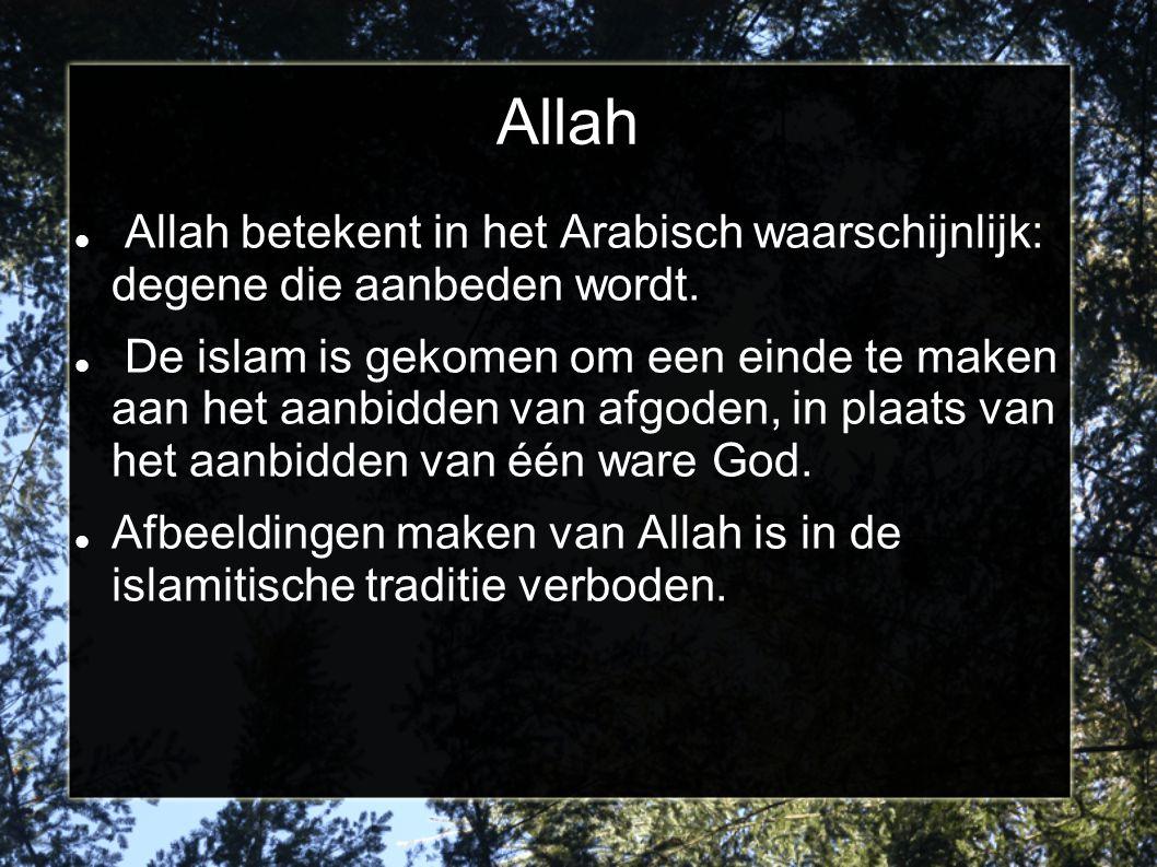 Allah Allah betekent in het Arabisch waarschijnlijk: degene die aanbeden wordt. De islam is gekomen om een einde te maken aan het aanbidden van afgode