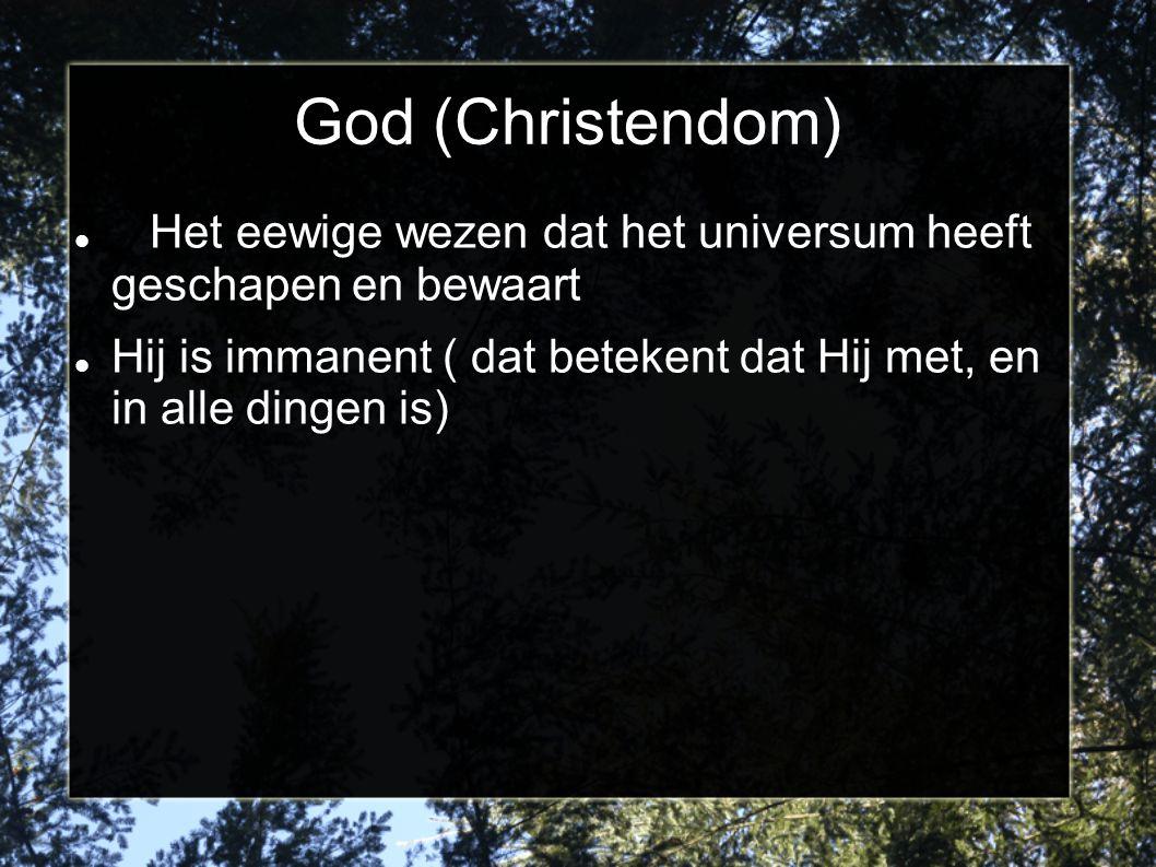 God (Christendom) Het eewige wezen dat het universum heeft geschapen en bewaart Hij is immanent ( dat betekent dat Hij met, en in alle dingen is)
