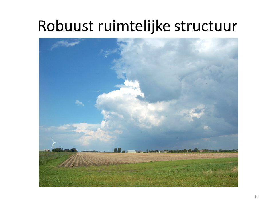 Robuust ruimtelijke structuur 19