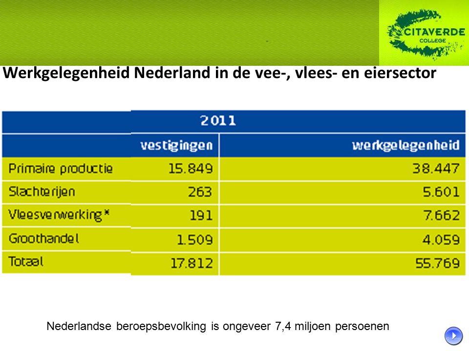 Werkgelegenheid Nederland in de vee-, vlees- en eiersector Nederlandse beroepsbevolking is ongeveer 7,4 miljoen persoenen
