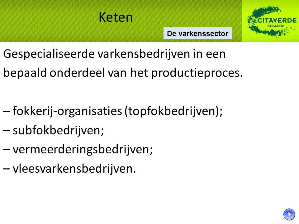 Gespecialiseerde varkensbedrijven in een bepaald onderdeel van het productieproces. – fokkerij-organisaties (topfokbedrijven); – subfokbedrijven; – ve