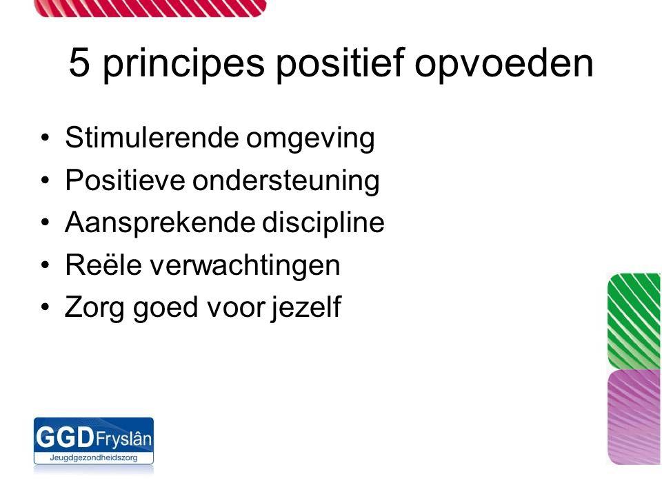 5 principes positief opvoeden Stimulerende omgeving Positieve ondersteuning Aansprekende discipline Reële verwachtingen Zorg goed voor jezelf