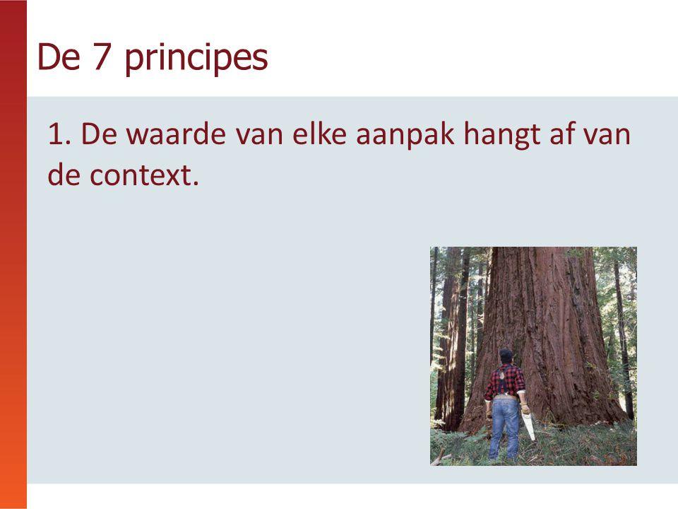 1. De waarde van elke aanpak hangt af van de context. De 7 principes