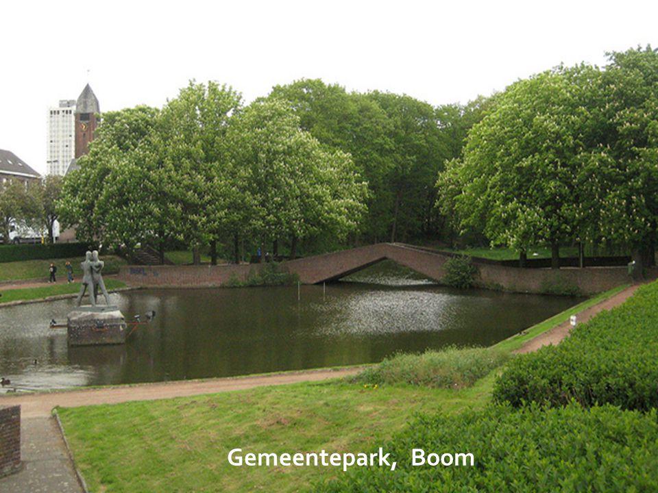 Cassenbroek, Bonheiden