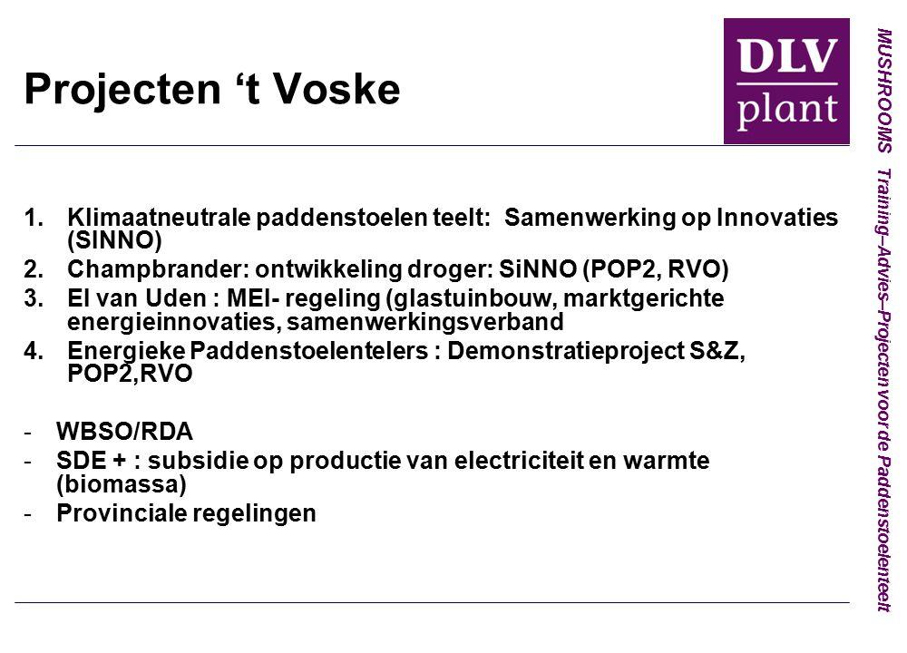 MUSHROOMS Training–Advies–Projecten voor de Paddenstoelenteelt Projecten 't Voske 1.Klimaatneutrale paddenstoelen teelt: Samenwerking op Innovaties (SINNO) 2.Champbrander: ontwikkeling droger: SiNNO (POP2, RVO) 3.EI van Uden : MEI- regeling (glastuinbouw, marktgerichte energieinnovaties, samenwerkingsverband 4.Energieke Paddenstoelentelers : Demonstratieproject S&Z, POP2,RVO -WBSO/RDA -SDE + : subsidie op productie van electriciteit en warmte (biomassa) -Provinciale regelingen