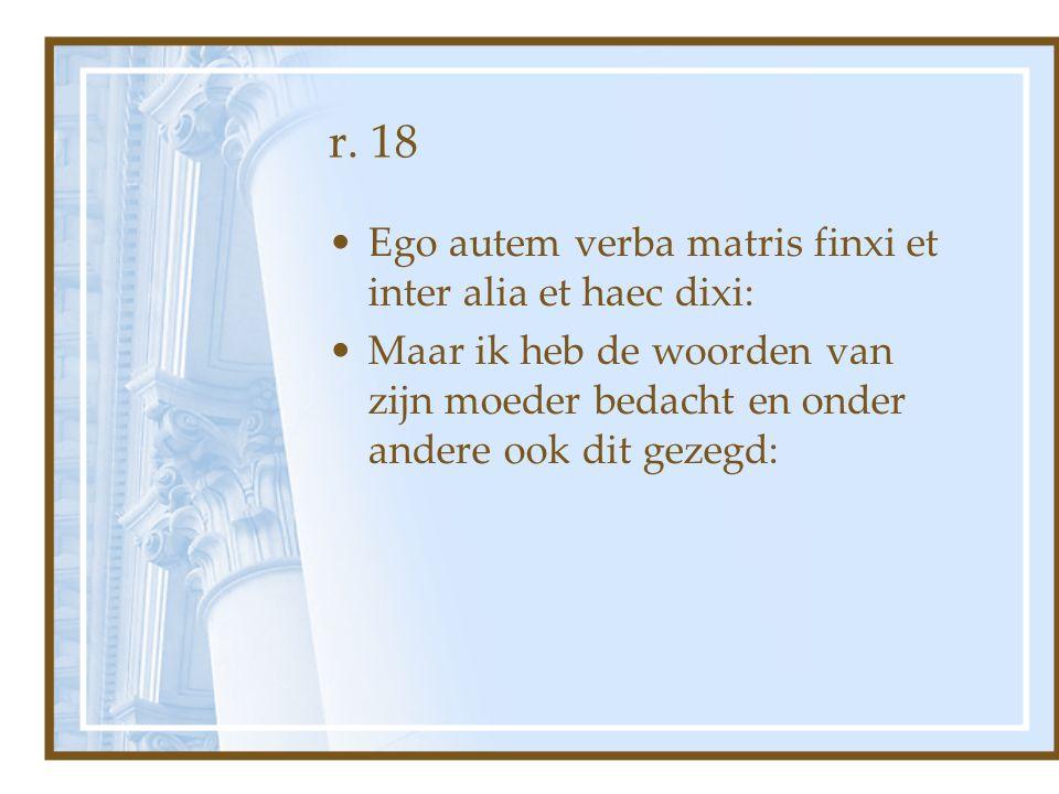 r. 18 Ego autem verba matris finxi et inter alia et haec dixi: Maar ik heb de woorden van zijn moeder bedacht en onder andere ook dit gezegd: