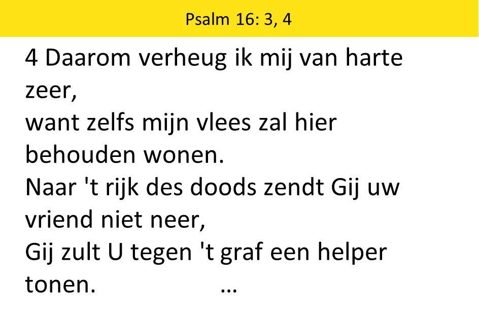 Psalm 16: 3, 4 4 Daarom verheug ik mij van harte zeer, want zelfs mijn vlees zal hier behouden wonen.
