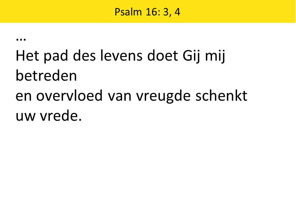 Psalm 16: 3, 4 … Het pad des levens doet Gij mij betreden en overvloed van vreugde schenkt uw vrede.