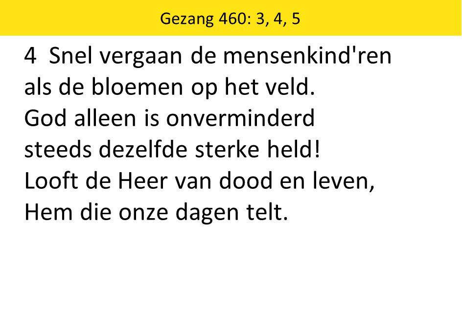 Gezang 460: 3, 4, 5 4 Snel vergaan de mensenkind ren als de bloemen op het veld.