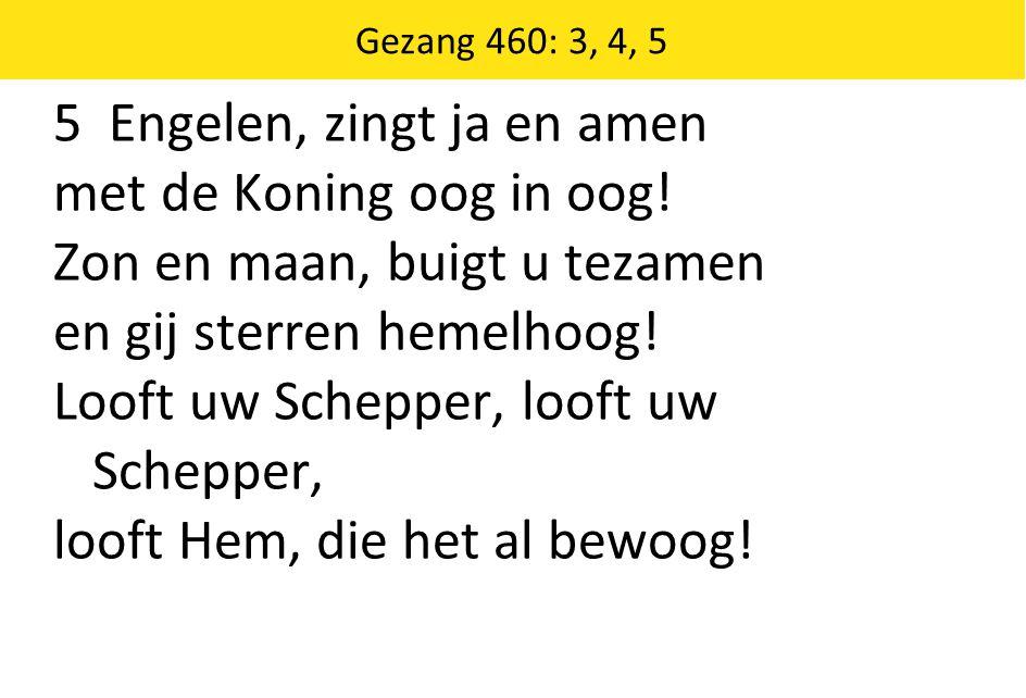 Gezang 460: 3, 4, 5 5 Engelen, zingt ja en amen met de Koning oog in oog.