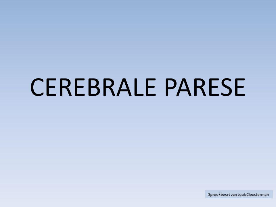 WAAR IK HET OVER GA HEBBEN  Wat is cerebrale parese.