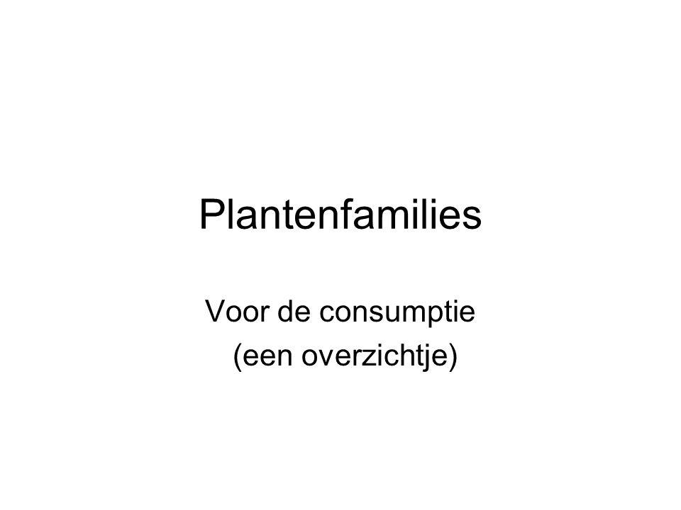 Plantenfamilies Voor de consumptie (een overzichtje)