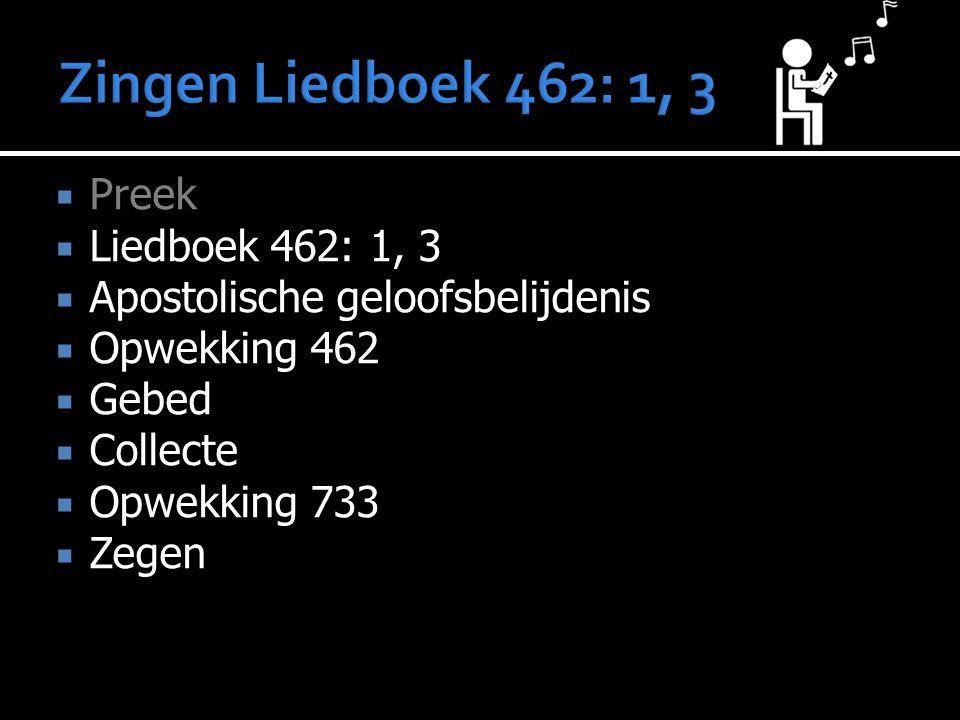  Preek  Liedboek 462: 1, 3  Apostolische geloofsbelijdenis  Opwekking 462  Gebed  Collecte  Opwekking 733  Zegen