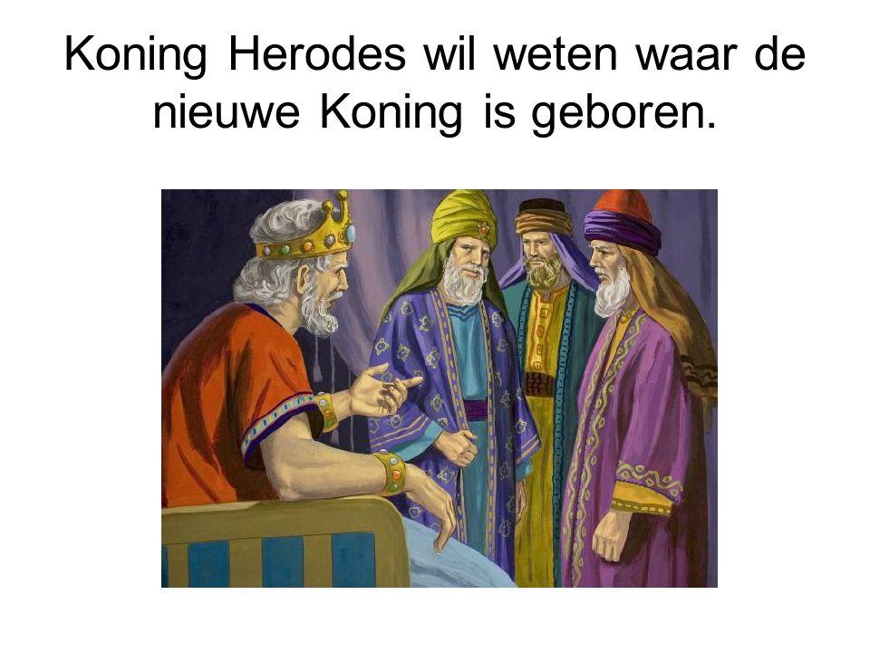 Koning Herodes wil weten waar de nieuwe Koning is geboren.