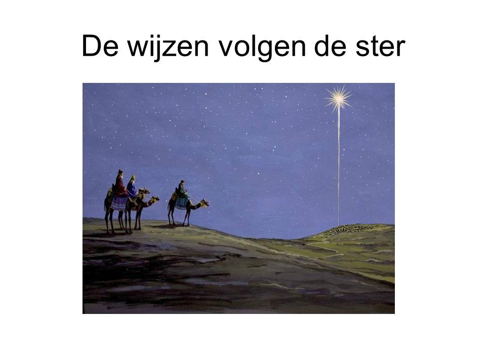 De wijzen volgen de ster