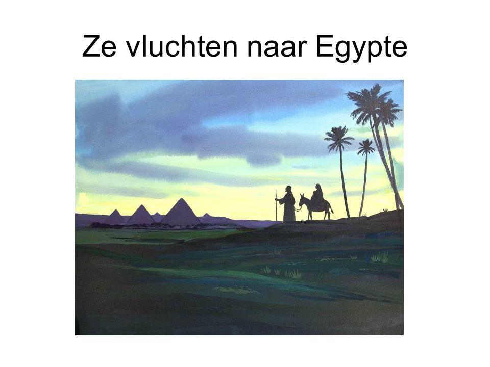 Ze vluchten naar Egypte