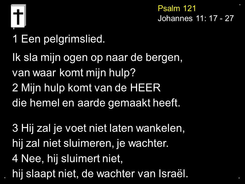 .... Psalm 121 Johannes 11: 17 - 27 1 Een pelgrimslied. Ik sla mijn ogen op naar de bergen, van waar komt mijn hulp? 2 Mijn hulp komt van de HEER die