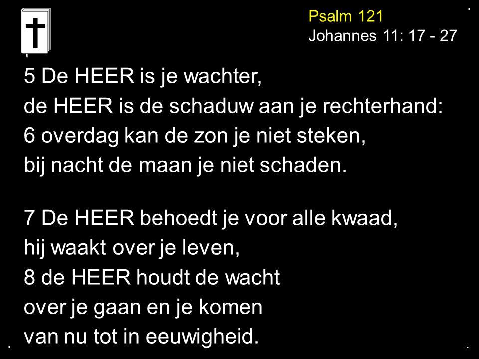 .... Psalm 121 Johannes 11: 17 - 27 5 De HEER is je wachter, de HEER is de schaduw aan je rechterhand: 6 overdag kan de zon je niet steken, bij nacht