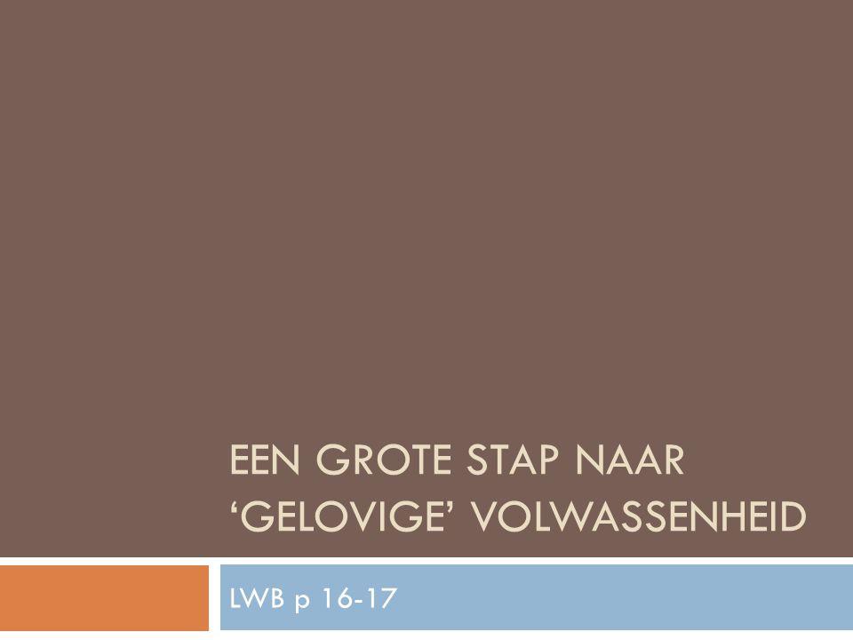 EEN GROTE STAP NAAR 'GELOVIGE' VOLWASSENHEID LWB p 16-17
