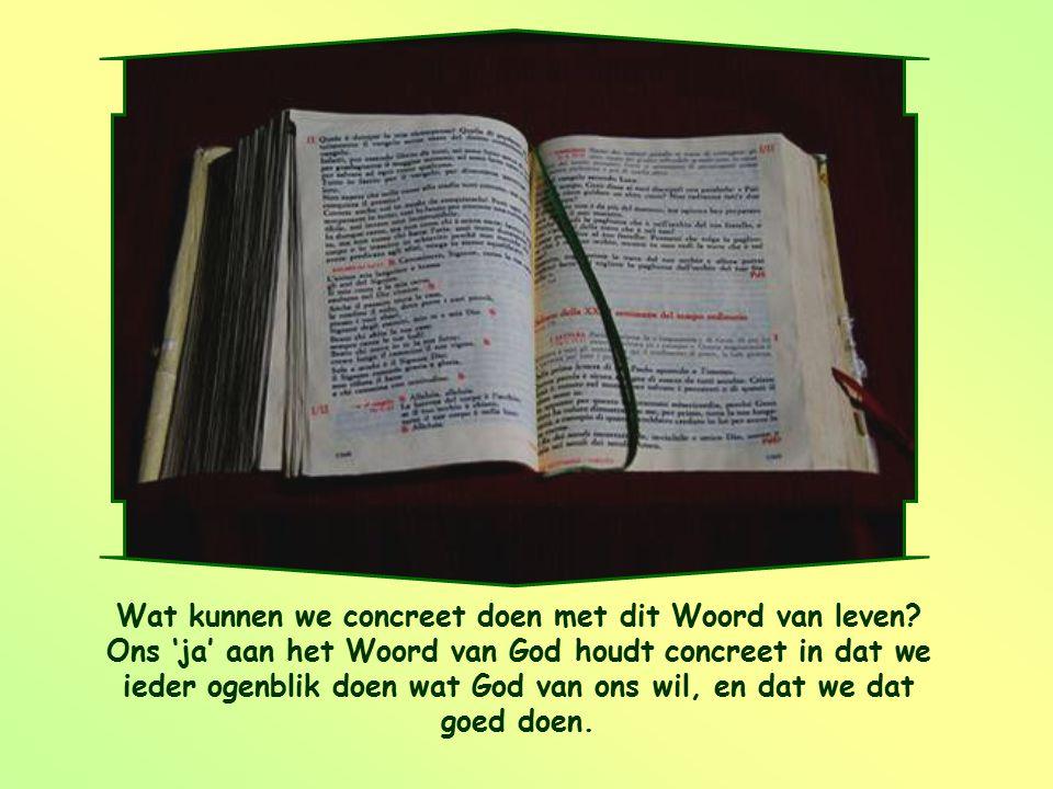 """""""Ik ben de dienares van de Heer; laat met mij gebeuren wat U gezegd hebt."""" Lucas 1,38"""