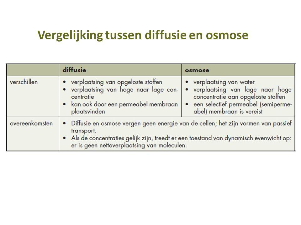 Vergelijking tussen diffusie en osmose
