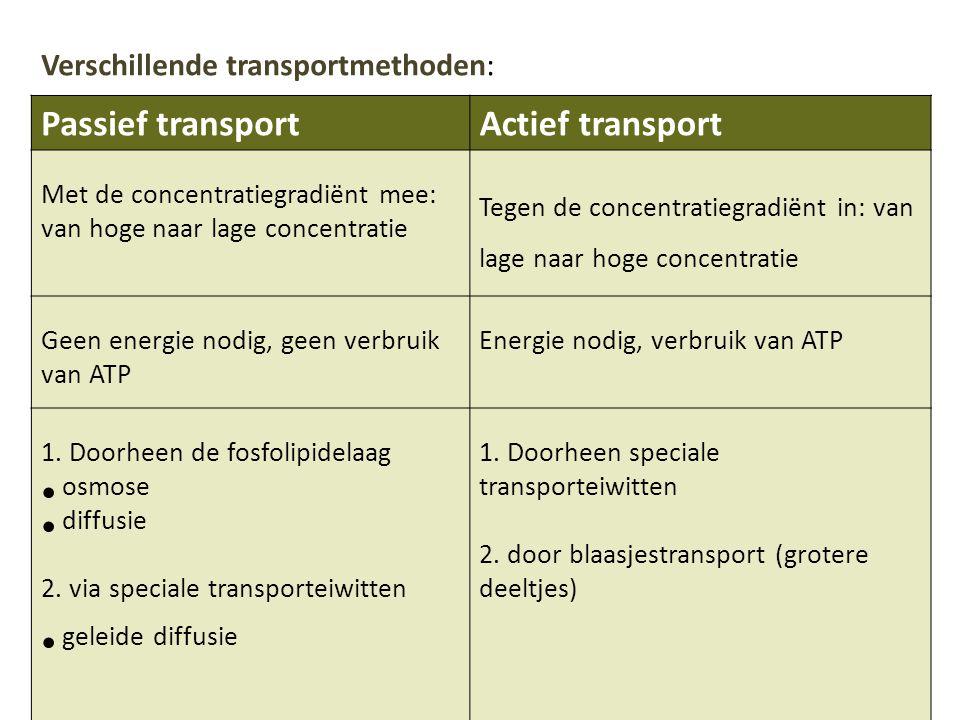Passief transportActief transport Met de concentratiegradiënt mee: van hoge naar lage concentratie Tegen de concentratiegradiënt in: van lage naar hoge concentratie Geen energie nodig, geen verbruik van ATP Energie nodig, verbruik van ATP 1.