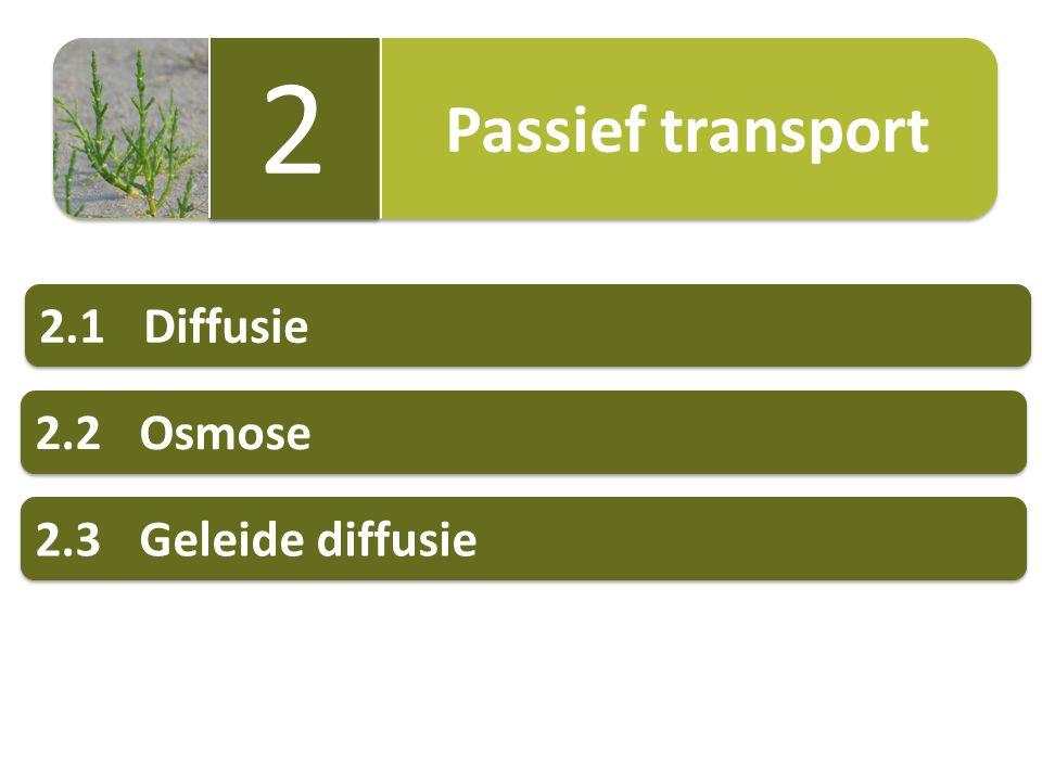 Passief transport 2 2 2.1Diffusie 2.2Osmose 2.3Geleide diffusie
