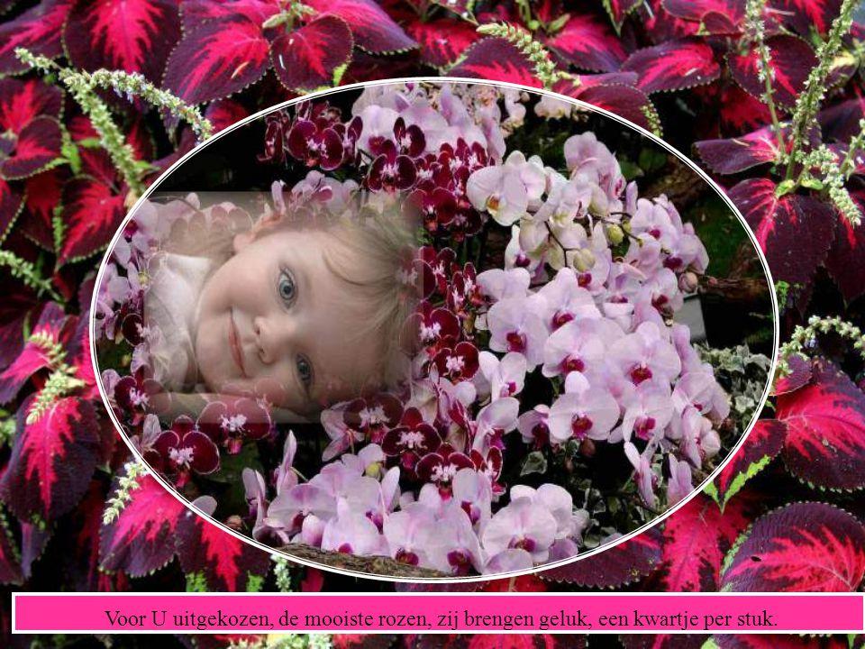 Een weelde aan bloemen en heel veel publiek. Een mooi stralend meisje, een hartje van goud.