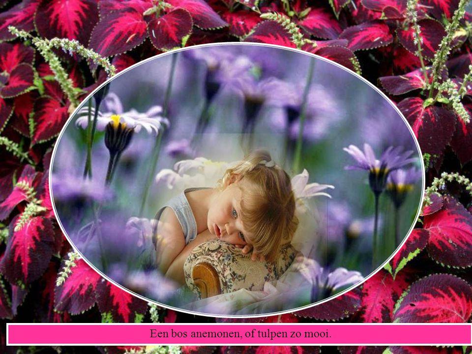 Voor U uitgekozen, de mooiste rozen, zij brengen geluk, een kwartje per stuk.