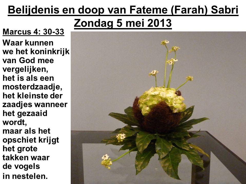 Belijdenis en doop van Fateme (Farah) Sabri Zondag 5 mei 2013 Marcus 4: 30-33 Waar kunnen we het koninkrijk van God mee vergelijken, het is als een mosterdzaadje, het kleinste der zaadjes wanneer het gezaaid wordt, maar als het opschiet krijgt het grote takken waar de vogels in nestelen.