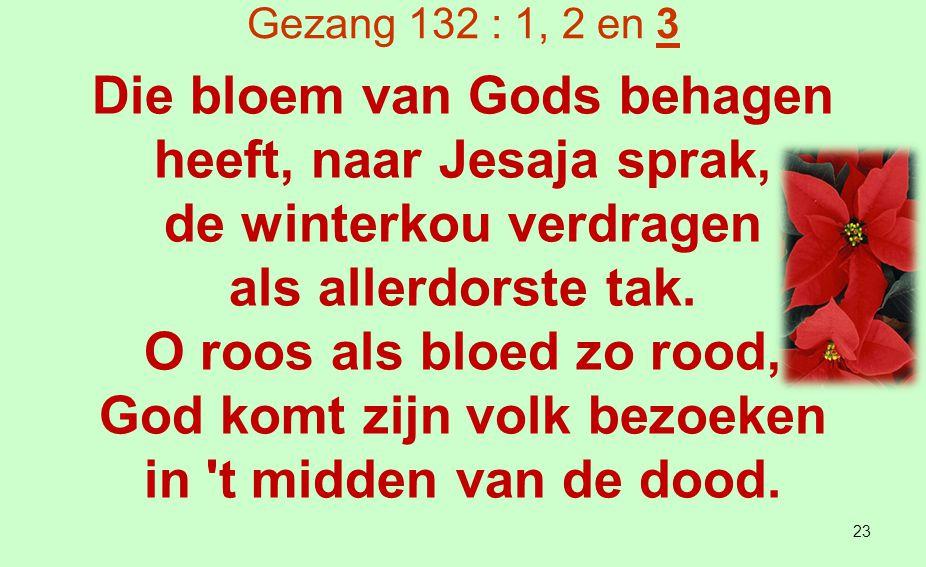 Micha 5 : 1 1 Uit jou, Betlehem in Efrata, te klein om tot Juda's geslachten te behoren, uit jou komt iemand voort die voor mij over Israël zal heersen.