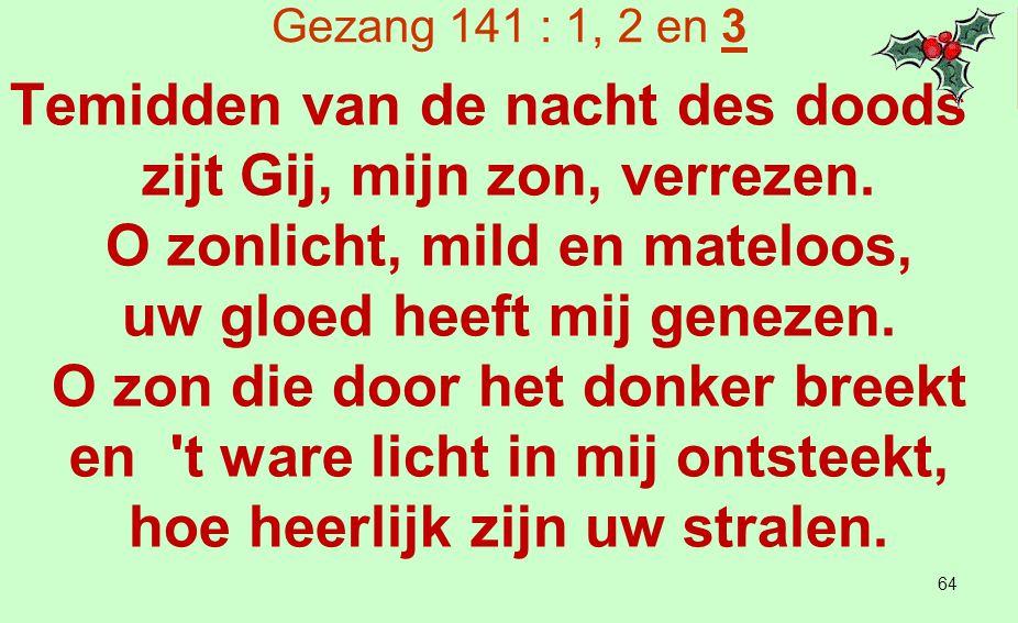 'Geboorte' (Ida Gerhardt) (1 van 3) Gods liefde op aarde neergedaald ligt in een stal op stro te slapen.