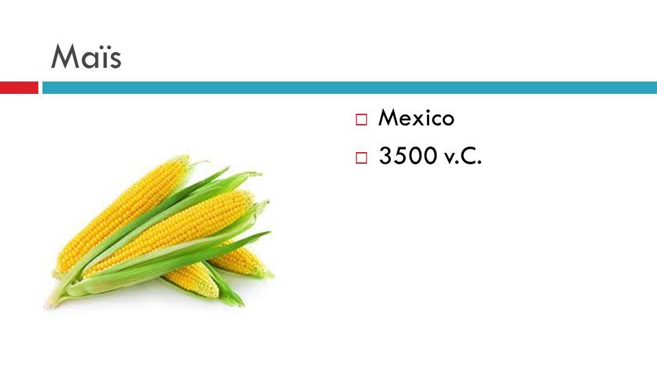 Maïs  Mexico  3500 v.C.