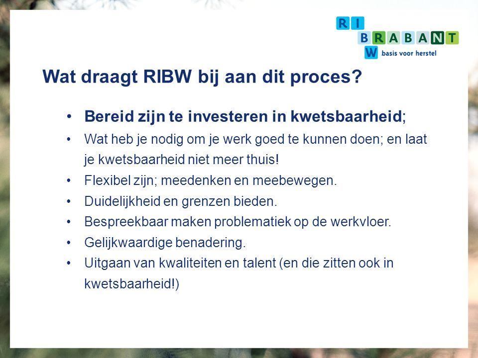 Wat draagt RIBW bij aan dit proces? Bereid zijn te investeren in kwetsbaarheid; Wat heb je nodig om je werk goed te kunnen doen; en laat je kwetsbaarh