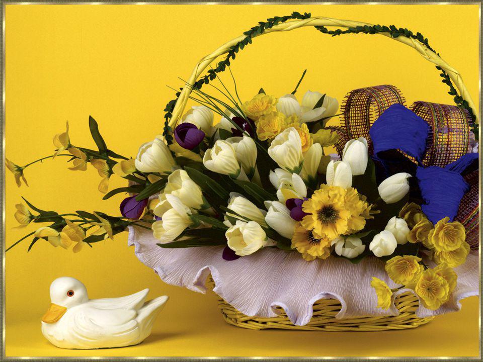 Aan alle mensen die ik ken, of waar ik een vriend-in van ben. Zowel voor groot als voor klein, dat Pasen een feestdag mag zijn.