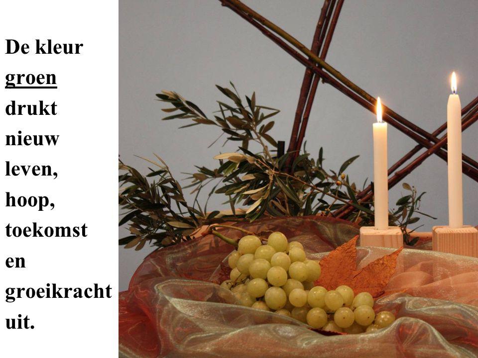 In de Bijbel behoren olijf, vijg en wijnstok tot de gezegende vruchten die in Deuteronomium 8:8 gekoppeld worden aan het goede land waarin God ons thuis wil brengen.