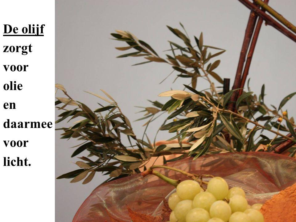 De wijnstok zorgt voor sap dat door de gisting eveneens bewaard kan worden en mensen vrolijk maakt.
