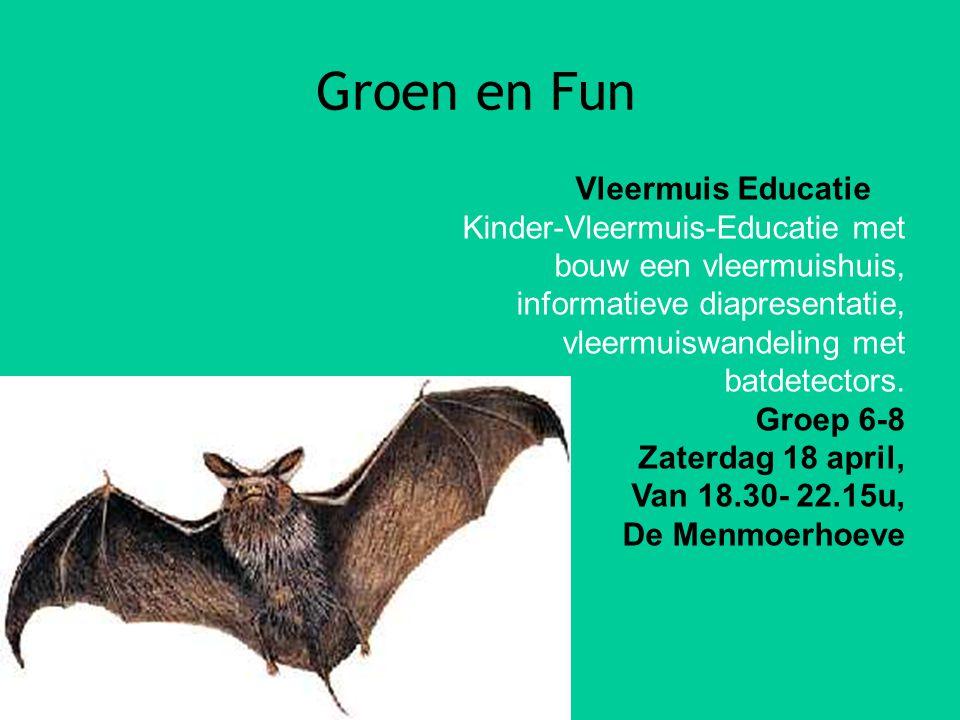 Groen en Fun Vleermuis Educatie Kinder-Vleermuis-Educatie met bouw een vleermuishuis, informatieve diapresentatie, vleermuiswandeling met batdetectors